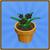 Blackorchidicon