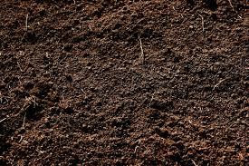 File:Dirt 1.jpg