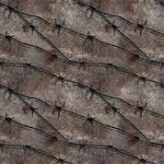 Hidden Camouflage 3 CoDG