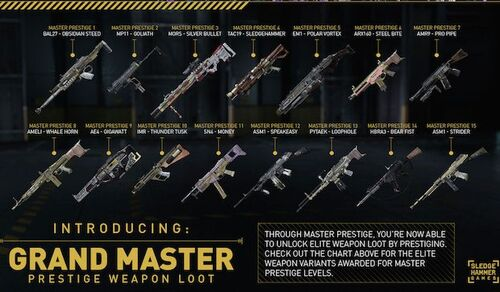 Master Prestige elite weapon unlocks AW