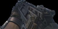S-12/Variants