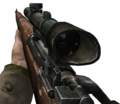 Springfield CoD2.png