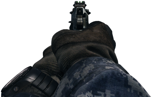 File:M9A1 iron sights CoDG.png