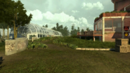 Codonline estatetropical housebackyard