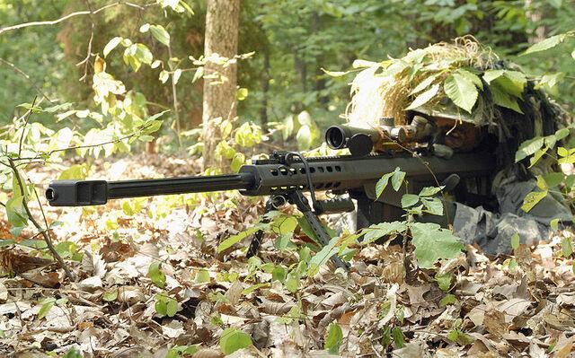 File:Personal Joe Copp Barrett M82A1.jpg