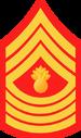 USMC-E9