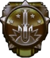 Raining Death Medal BOII