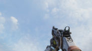 Argus Laser Sight first-person BO3