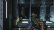 PDW Gold AW