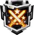 Strength and Honor Medal BO3.png