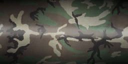 File:Menu mp weapons camo wood.png