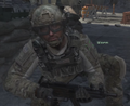 Worm MW3.png
