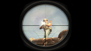 Scope Glint Time and Fate BO2