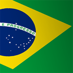 File:Brazil Emblem IW.png