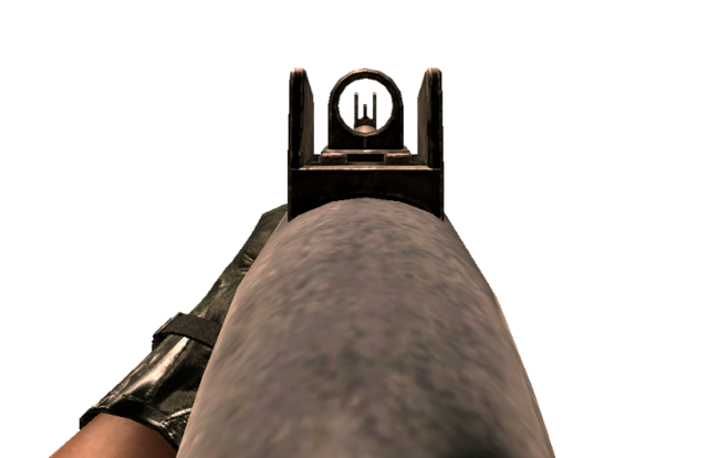 File:W1200 Iron Sights CoD4.png