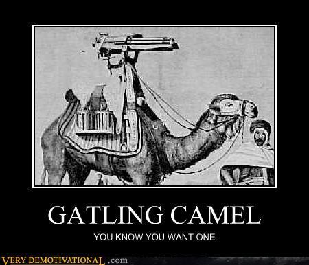 File:Gataling camel.jpg