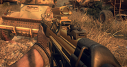 MP5 Gold Reflex BOII