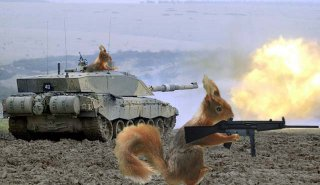 File:Squirrelarmy.jpg