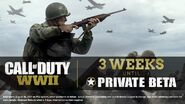Private Beta 3 Weeks Promo WWII
