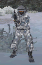 Brewer Standing MW3 DS