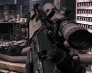 M14 EBR Variable Zoom MW3