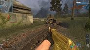 AK-47 Gold CoDO