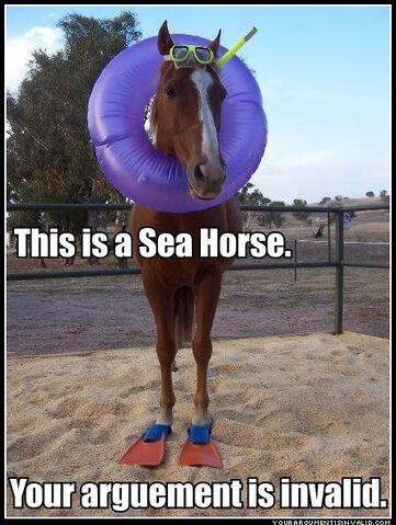 File:Sea-horse-r.jpg