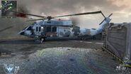 Chinese Black Hawk