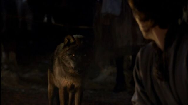 File:Leontes-and-the-wolf.jpg