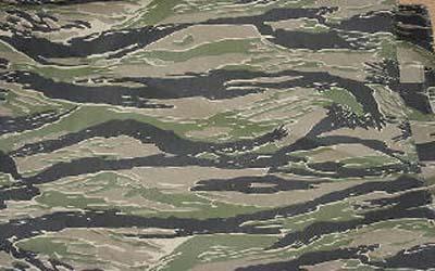 File:Tiger camo-1-.jpg