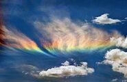 Jack Rainbow
