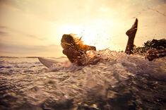 Fun-girl-ocean-photography-pretty-Favim.com-405145