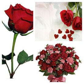 Flowersfordance