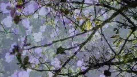 Relaxation Piano Music I - Chopin, Schubert, Handel, Brahms & Others