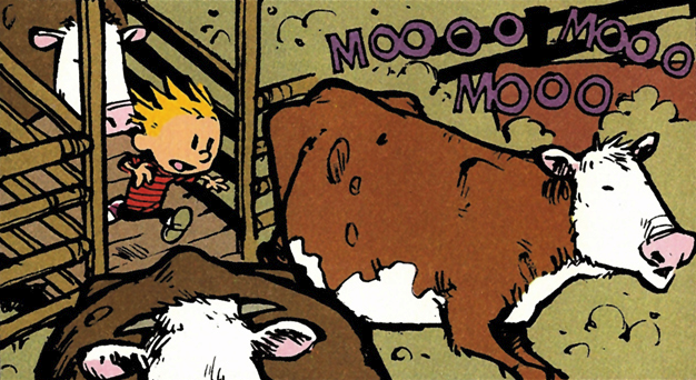 File:Feedlot Calvin.png