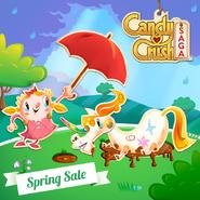 Spring Sale 150407 3