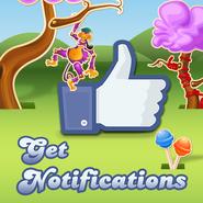 Get Notifications