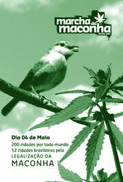 Brazil 2008 GMM 3