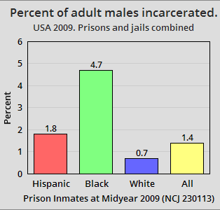 USA 2009. Percent of adult males incarcerated by race and ethnicity