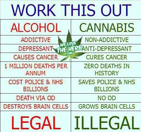 File:Alcohol versus cannabis. NHS is National Health Service in UK.jpg
