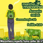 Aracaju 2012 GMM May 20 Brazil 2