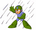 RainFlush