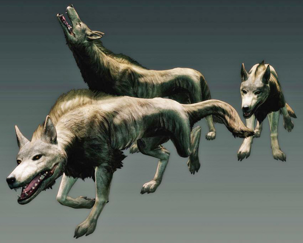 File:Dragons Dogma Wolves.png