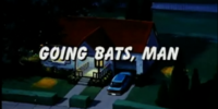 Going Bats, Man