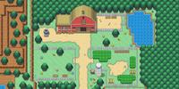 Dreamdery Ranch
