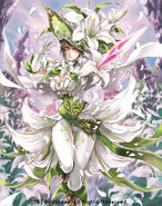 White Lily Musketeer, Cecilia (Full Art)