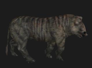 File:Animal pig.jpg