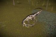 Utahraptor4