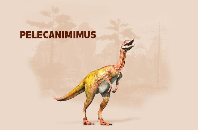 File:Pelecanimimus.jpg