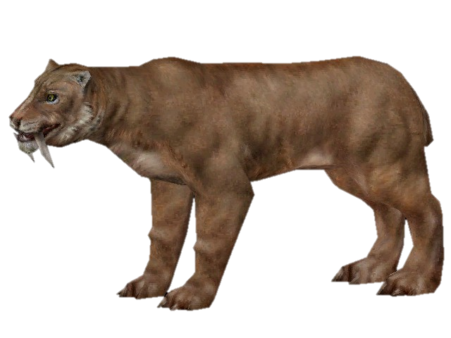 File:New smilodon.png